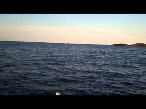rugged north Atlantic coastline