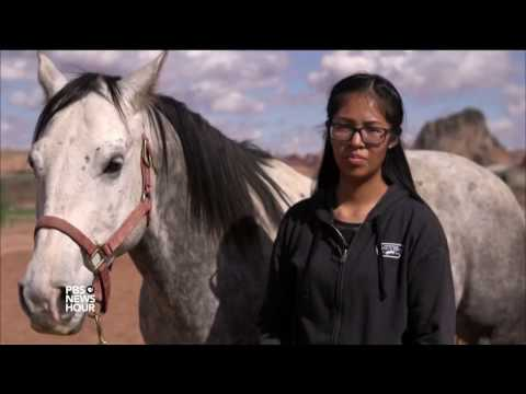 Hands-On Veterinary Program Helps Navajo Students Succeed