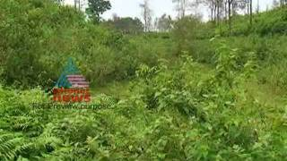 Sale in Kottamala Tea Estate -Asianet news Exclusive