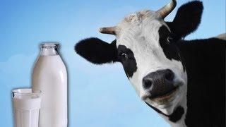 חלב - לא מה שחשבת