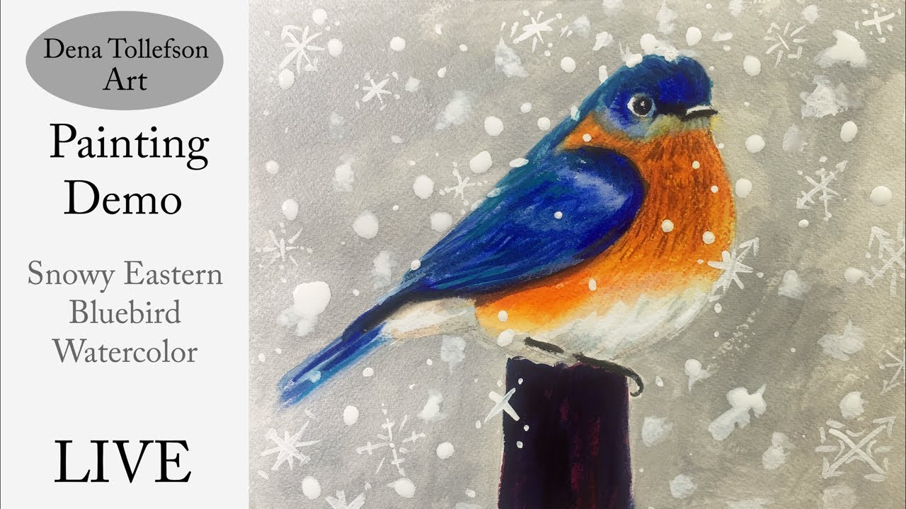 How To Paint A Snowy Eastern Bluebird In Watercolor Live Painting Demonstration With Dena T Youtube