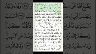 24-juz 10-sahifa Qur'on tilovati