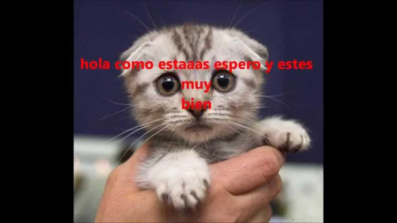 """RAP TRISTE """"HOLA COMO ESTAS"""" (╥︣﹏᷅╥)♬ 2015 ℂℛ_ℳİŤ☻ - YouTube"""