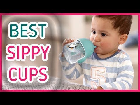 Best Sippy Cup 2017 & 2018 - Top 5 Sippy Cup