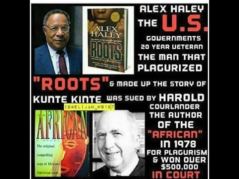 ALEX HALEY PLAGURIZED ROOTS
