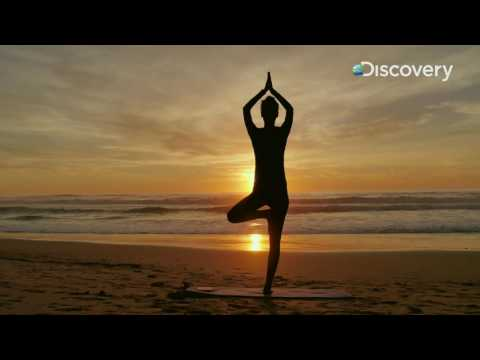 Inside Out - The Science of Ayurveda