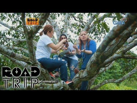 Road Trip: Sheryl, Manilyn, and Tina's mango picking in Guimaras