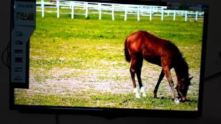 Panasonic full hd television picture quality review th-32d430dx