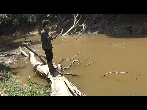 Mancing di sungai keruh II target ikan Lais thumbnail