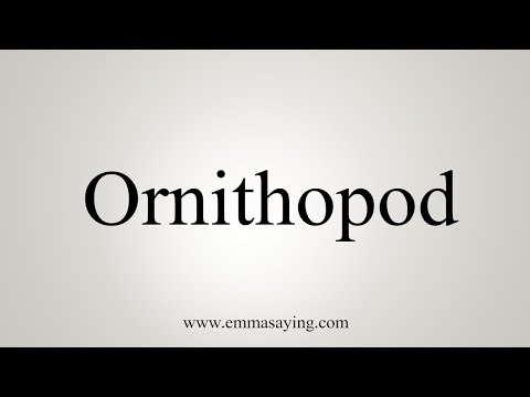 How To Pronounce Ornithopod