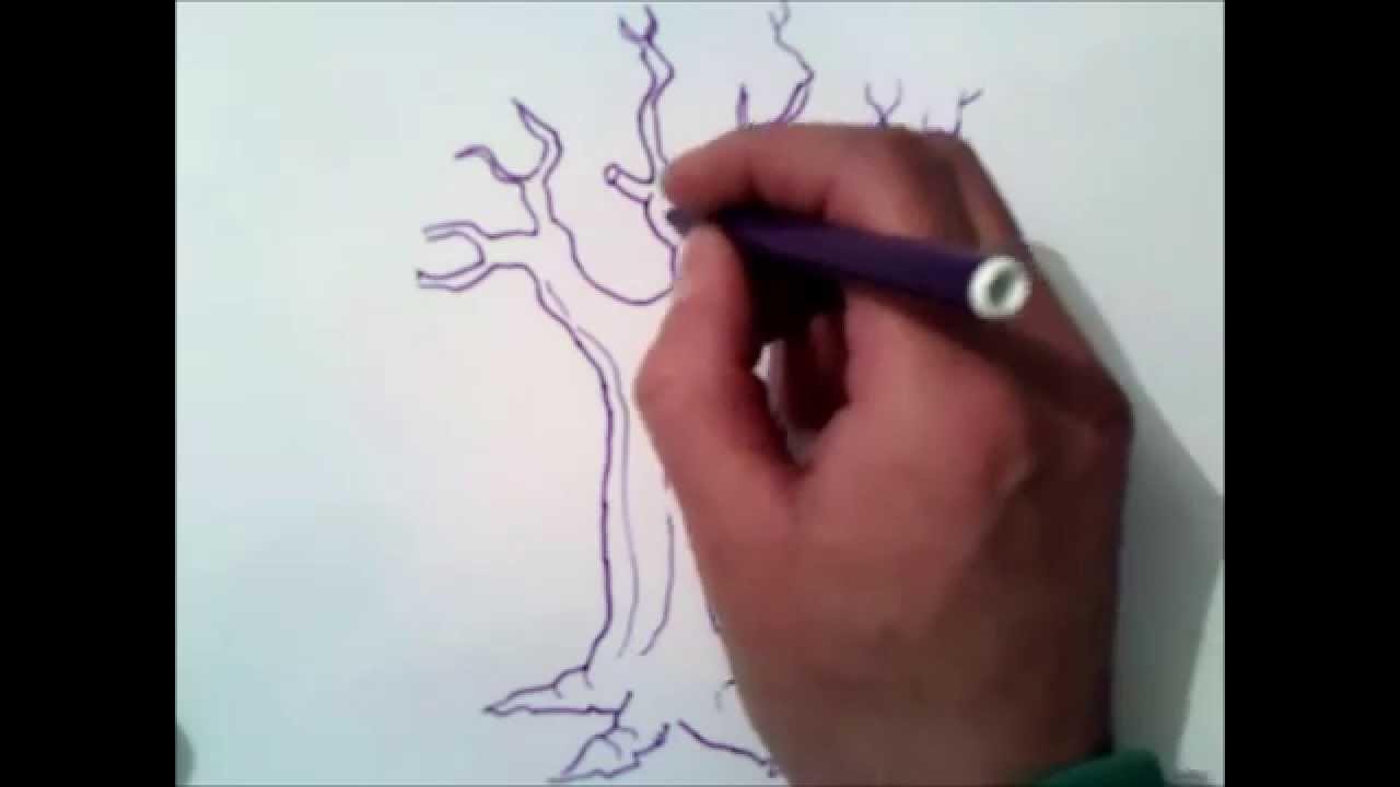 Yaprakları Olmadan Bir Ağaç çizmek Nasıl Youtube