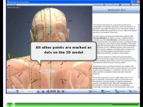 3d Anatomy for Acupuncture Software - Become an Acupuncturist