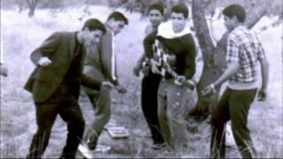 شنطة سفر - ناصر المزداوي