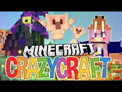 Pet Owls! | Ep 39 | Minecraft Crazy Craft 3.0