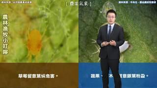 農業氣象預告1061023