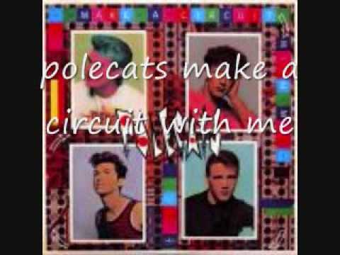 polecats make a circuit with me