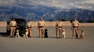 K-9 Wardens - Texas Parks And Wildlife [official]