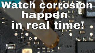 How fast will Coca Cola corrode a Macbook logic board?