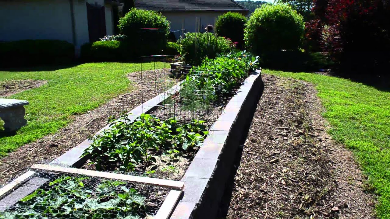 Successful Raised Bed Garden - Cement Block Construction ... on Backyard Patio Landscaping id=40712
