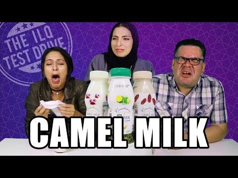 [ILQ Test Drive] Got camel milk?