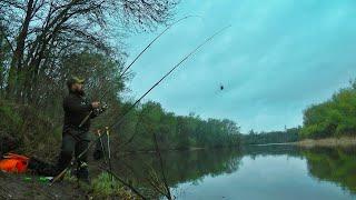 Рыбалка на Донку Закидушку Фидер Ранней Весной Застряли в лесу еле выбрались Ловля Карася на реке