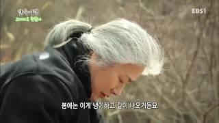 한국기행 - Korea travel_오지라도 괜찮아 5부 느리게 살기 위하여_#001