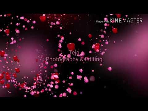||Chinnari Chinnari Chiluka||Telugu Lyrics||By Raviteja Nissie||Production Reflex||