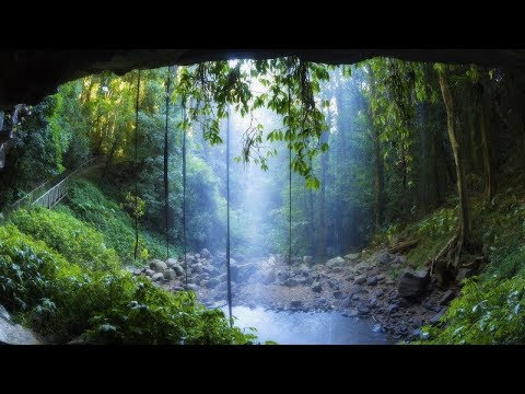 Zen Relaxation Music: Rain Forest Meditation | Green & Blue | Theta 5 hz in G | ♒Brainwave Sync♒