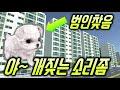 [상황극] 야~ 개짖는 소리좀 안나게해라~ 범인찾음!!