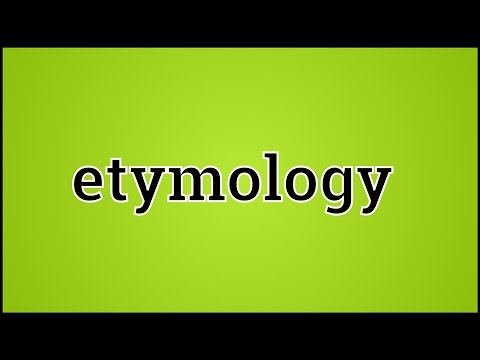 What Etymology Means