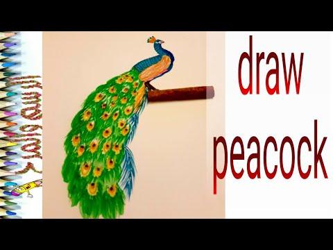 رسم طاووس وتلوينه للأطفال Draw Peacock Youtube