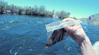 I-Found-a-FULL-Plastic-Baggie-Underwater-in-the-River-Returned-to-Owner-Amazing-Reaction