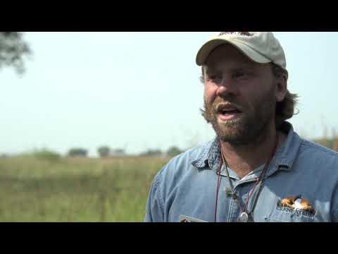 Career: Wildlife Biologist