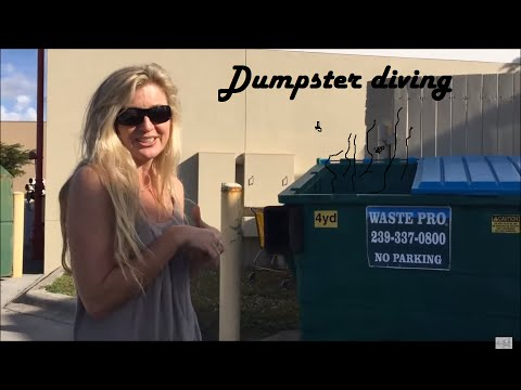 Retail Arbitrage at Big Box Stores: Dumpster Diving!! to ebay and Amazon