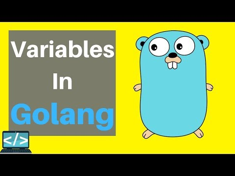 Golang Tutorial For Beginners | Variables and Scope thumbnail