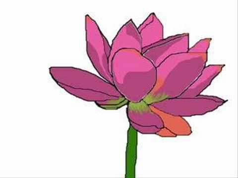 flower animation in photoshop youtube