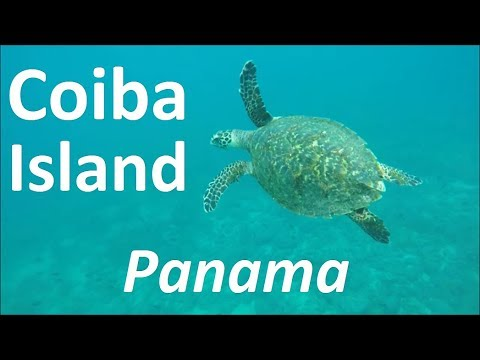 Day trip to Coiba Island in Panama
