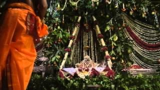 Vaishnavacharya Aditya Goswami , Sandhya Aarti Darshan(2014) at Shri Radha Raman Temple,vrindavan