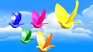 Colorful Pigeon ColorSong || Kids Songs vesves 3D Animation English Rhymes For Children