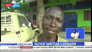 Jeshi la nzige lavamia Lodwar na kusababisha hofu kwa Wenyeji