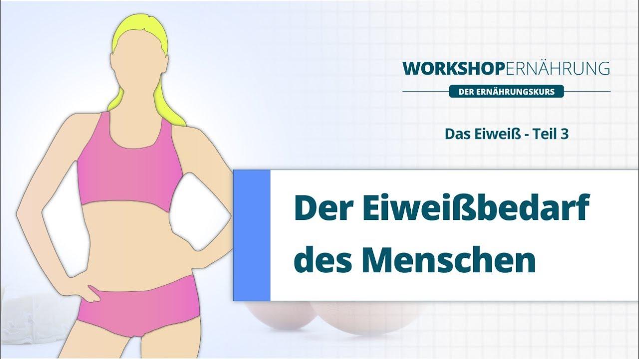 EIWEIß (3/4): Der Eiweißbedarf | Workshop Ernährung