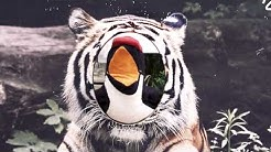 Pinguin-Patenschaft mit dem Duisburger Zoo