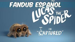 [Fandub Español] Lucas la araña - Capturado