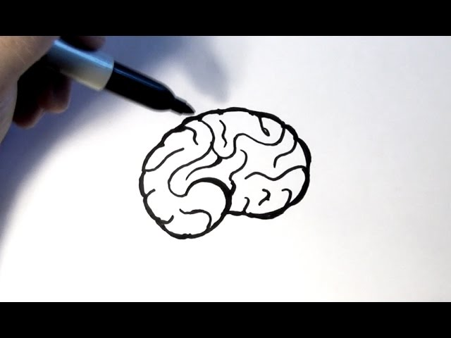 how to draw a brain youtube how to draw a brain youtube
