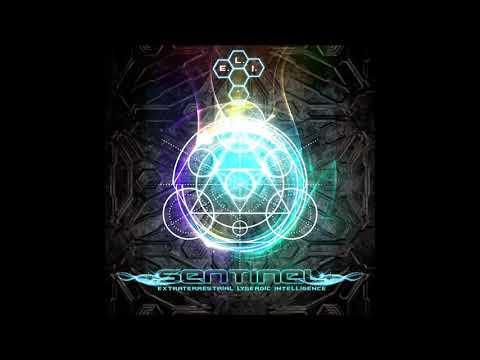 Sentinel - Extraterrestrial Lysergic Intelligence [Full Album]