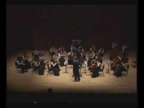 Bizet -   Carmen Suite (Habanera) - Hyup strings
