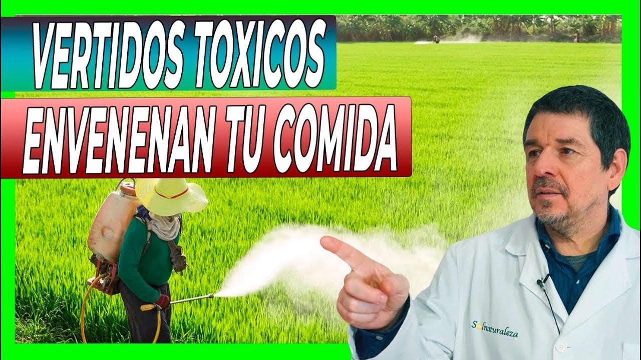 PROTEGE Tu INTESTINO: Vertidos Tóxicos en los cultivos