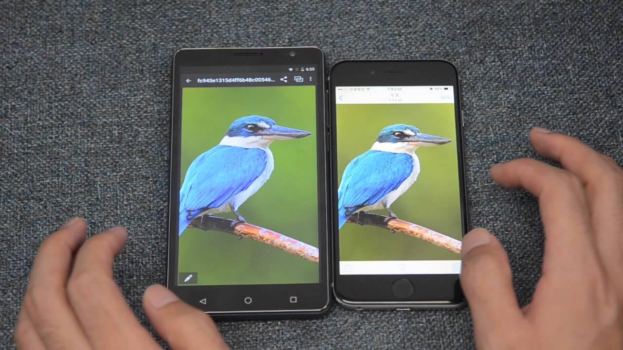 Iphone Five Screen