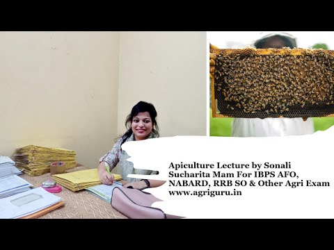 Apiculture Lecture by Sonali Sucharita Mam For IBPS AFO, NABARD, RRB SO & Other Agri Exam