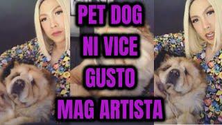 PET HUSKY ni VICE GANDA gusto MAG-ARTISTA!